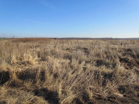 Продается земельный участок в д. большое Карасево Коломенского района - Фото 4