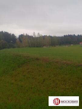 Прилесной участок 17,66 соток с видом на пруд, 30км по Калужскому ш. - Фото 3