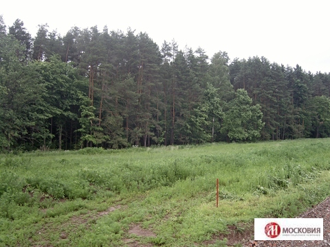 Продажа земельного участка в Чеховском районе - Фото 4