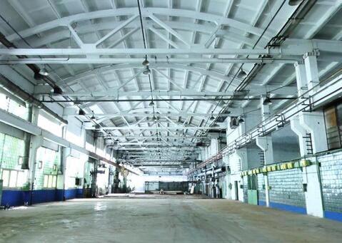 Сдам производственный цех 4 338 кв.м. - Фото 1