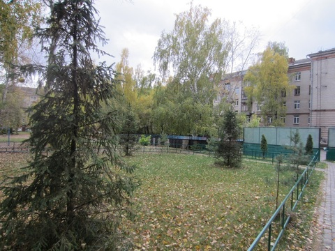 Сдача 3 комнатной квартиры Жуковский Горького 5 - Фото 4