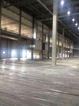 Сдам складское помещение 3200 кв.м, м. Комендантский проспект - Фото 4