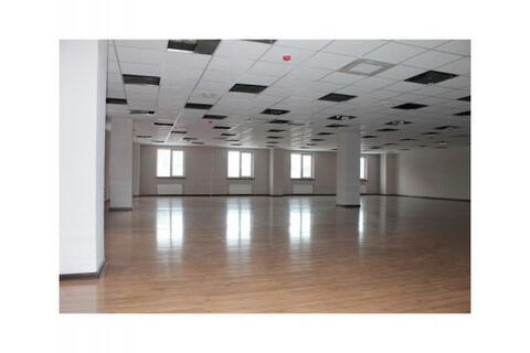 Сдается Офисное помещение 244м2 Преображенская площадь - Фото 2