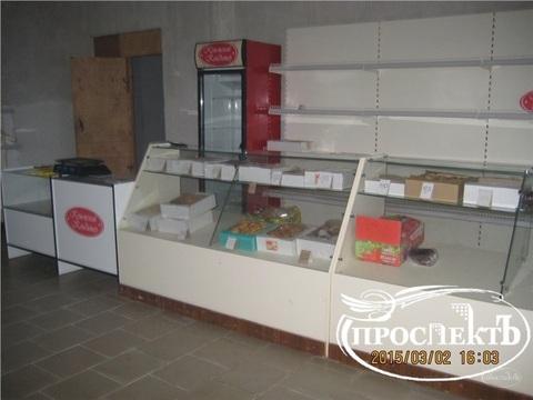Торгово-производственное помещение с. Чистенькое, (ном. . - Фото 3