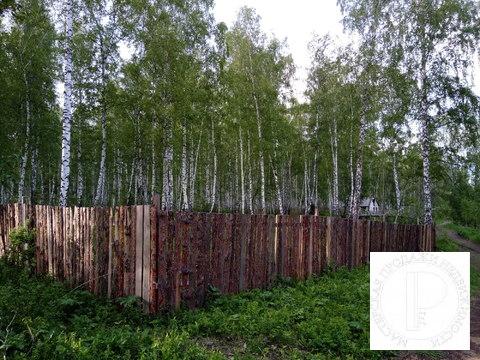 40 соток с лесом на станции Овинный - Фото 5