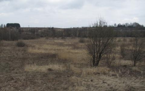 Продам 2,5 га вдоль Новорязанского ш. 35 км от МКАД ок. г. Бронницы - Фото 2