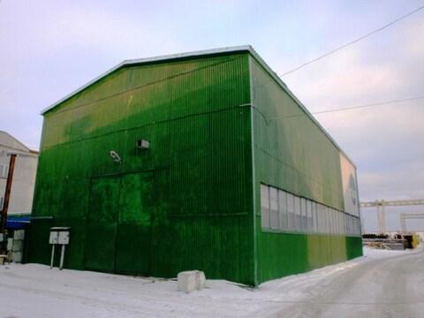 В аренду тёплое помещение (склад(производство) - Фото 5