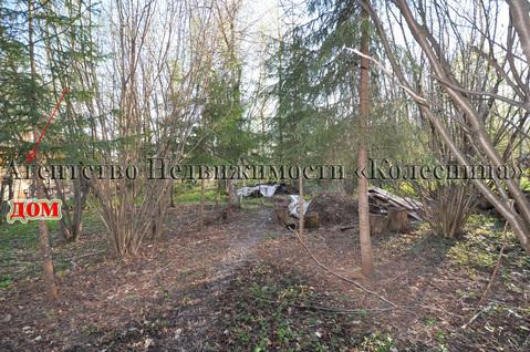 Ореховка. Лесной участок 20 соток с 2-этажным срубом дома, срубом бани - Фото 3