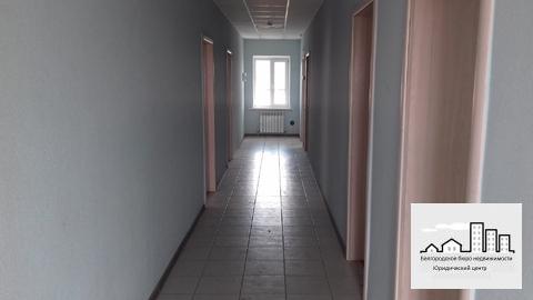 Продажа отдельно стоящего здания в городе Белгороде - Фото 4