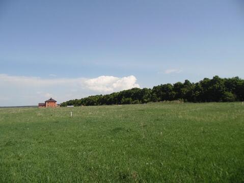 Земельный участок по по доступной цене - Фото 3
