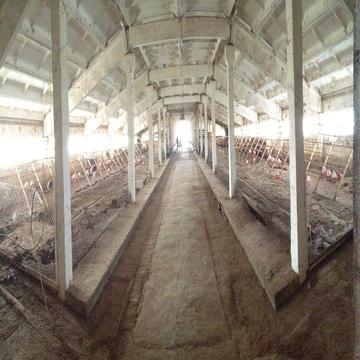 Сдам ферму в аренду Киевское шоссе, 90км, д.Тимашово - Фото 5