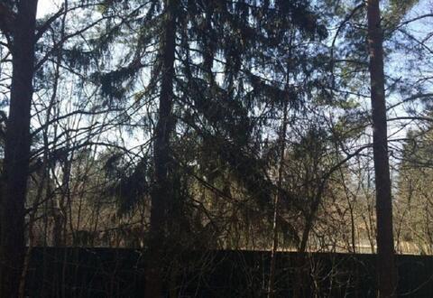 Участок 9 сот. , Минское ш, 20 км. от МКАД. - Фото 4