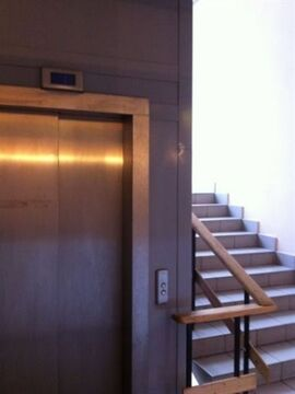 Сдам торговое помещение 51 кв.м, м. Площадь Восстания - Фото 4