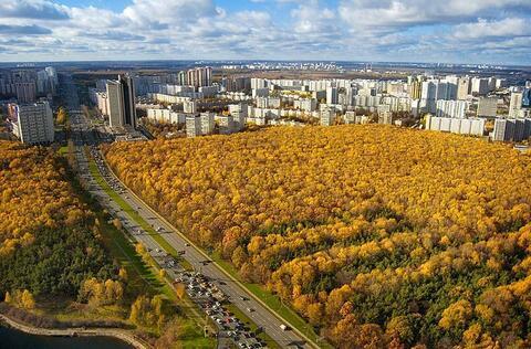 Продажа квартиры, м. Калужская, Ленинский пр-кт. - Фото 3