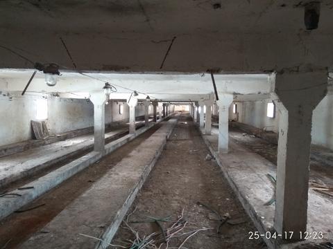 Продажа земельного участка в д. Лаголово, Ломоносовский р-н. - Фото 4