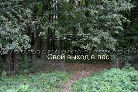 Варшавское ш. 18 км от МКАД, Дубровицы, Участок 19 сот. - Фото 4