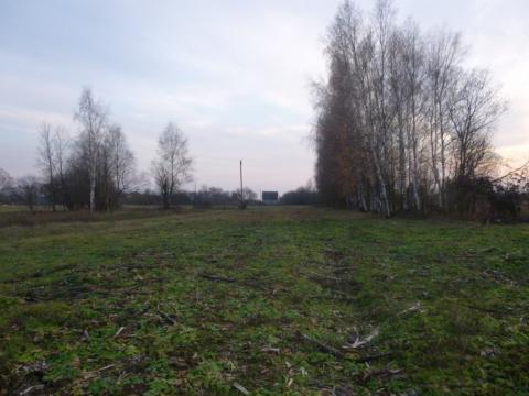 Участок 19 соток под строительство дома с пропиской в д. Молоствово - Фото 1