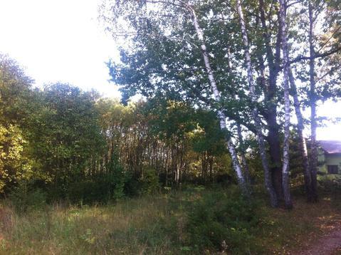 Участок на опушке леса - Фото 3