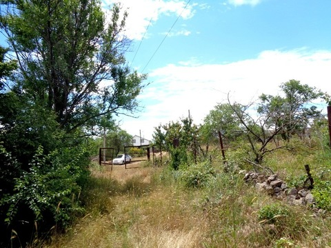 Предлагается жилая дача с участком на Фиоленте рядом с лесом - Фото 5