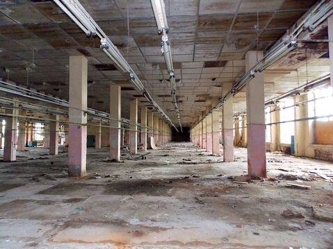Производственная площадка 40 тыс кв.м в г. Вичуга Ивановской области - Фото 5