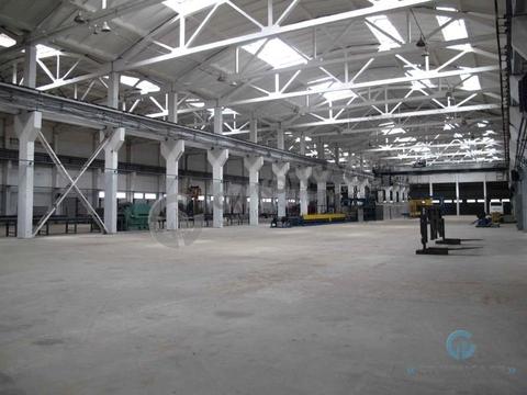 Промышленное помещение 5000 кв.м, ул. Полины Осипенко - Фото 4