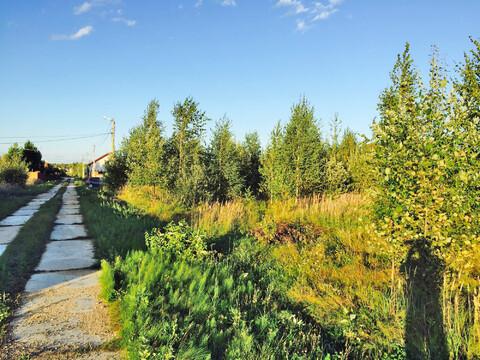 Земельный участок 22 сотки в кп Истомино. Лес, газ, электр-ство, вода. - Фото 3