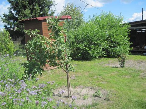 Крепкий дом с новой баней - Фото 2