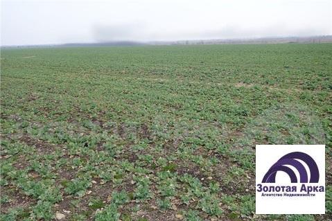 Продажа земельного участка, Северская, Северский район, В границах СПК . - Фото 3