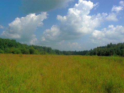 Купить ровные земельные участки по 3 га в Гатчинском районе у озера - Фото 3