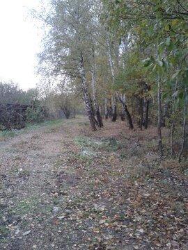 Продажа земельного участка в деревне Судимля - Фото 1