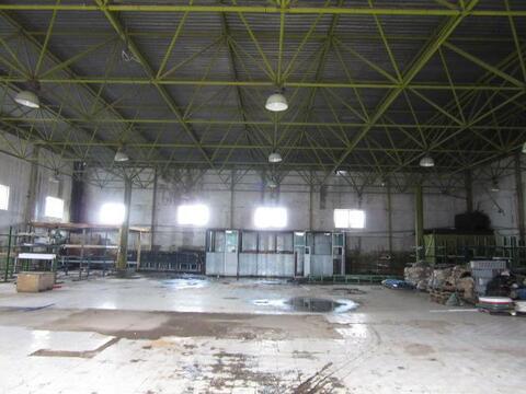 Производственно-складская база 5100 м2, г.Солнечногорск - Фото 5