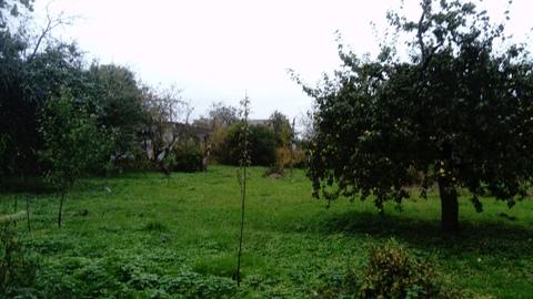 Продам участок в деревне Редино - Фото 5