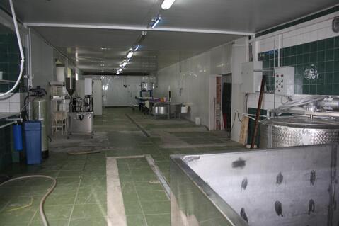 Производственный завод по изготовлению сыра - Фото 4