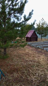 Продается новый обжитой дом в д. Песьяне - Фото 2