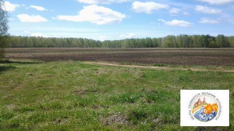 Земля 5 га, под ведение крестьянского хозяйства. - Фото 2