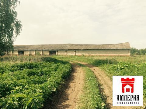 Продается фермерское хозяйство - Фото 5