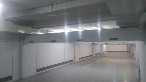 Холодный склад в подвале пандус и грузовой лифт - Фото 4