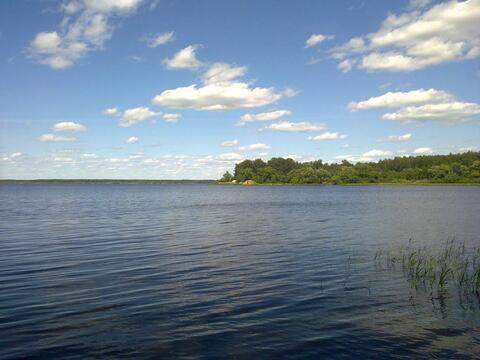 Участок 1 Га на 1 линии р. Волга с лесным массивом, г. Конаково - Фото 2