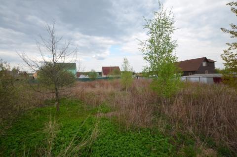 Участок в Сумароково СПК Ягодка рядом с Лобней - Фото 4