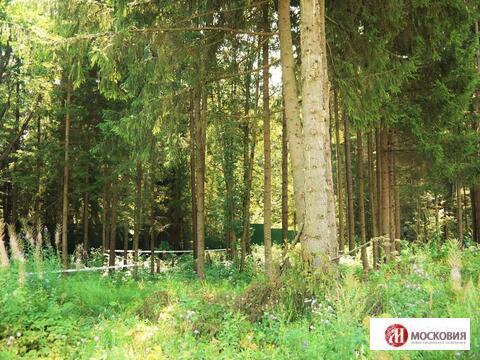 Участок 12,8 соток в поселке, окруженном хвойным лесом, Киевское ш. - Фото 1