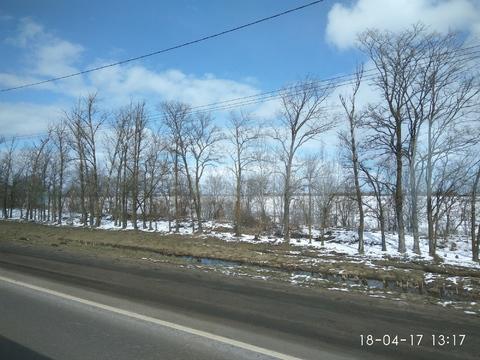 Продается земля под многоквартирную застройку в Тосненском районе - Фото 3