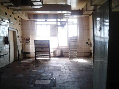 Сдам складское помещение 580 кв.м, м. Проспект Ветеранов - Фото 5