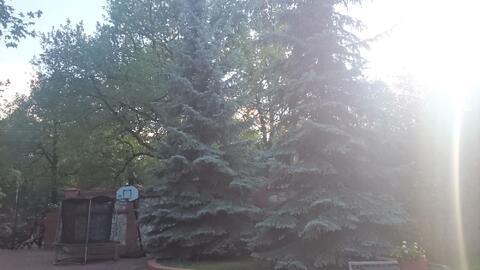 Коттедж в дубовой роще - Фото 3