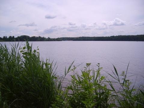 Чиверёво участок 1,13 Га на 1-ой линии Клязьминского водохранилища - Фото 4