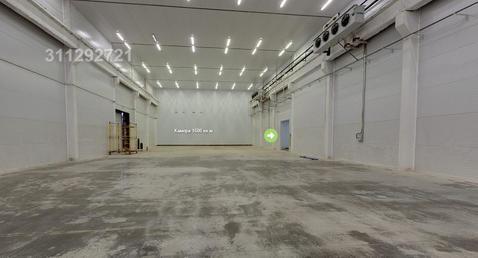 Отапливаемые складские помещения класса «В +» 1300 кв.м. и 2600 кв. - Фото 3