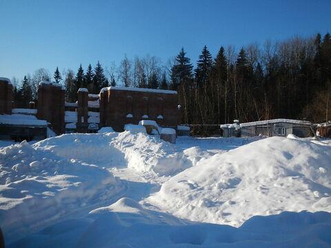 Крекшино 50 соток крайние к лесу с недостроенным домом - Фото 1