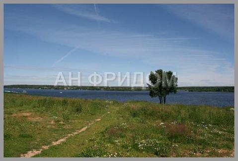 Участок 4 га под ИЖС в 100 метрах от берега Пироговского водохранилища - Фото 5