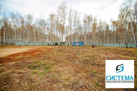 Участок 35 сот. Байкальский тракт 8 км - Фото 1