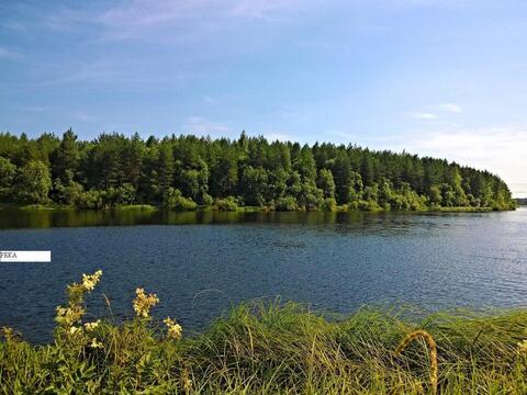 Участок с домом у реки и леса в п. Новолисино, ИЖС - Фото 1