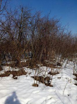 Продам дачку 19 км от Рязани - Фото 2